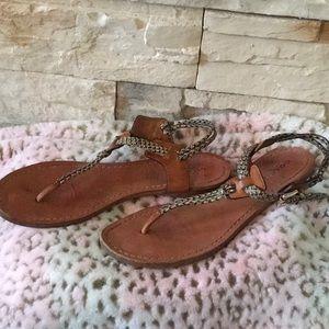 Coach Shoes - Snake Coach Sandals